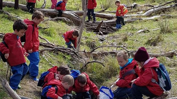 Lobethal kindergarten students playing in creek
